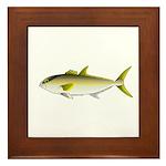 Greater Amberjack fish Framed Tile