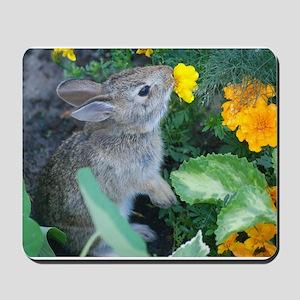 baby bunny Mousepad