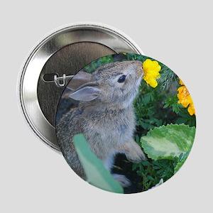 "baby bunny 2.25"" Button"
