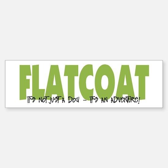 Flatcoat IT'S AN ADVENTURE Bumper Bumper Bumper Sticker