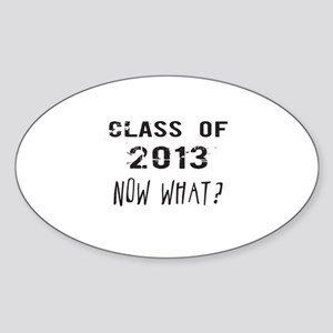 Class of 2013 Now What Sticker
