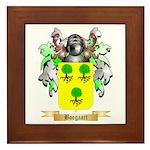 Boogaart Framed Tile