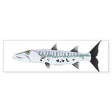 Great Barracuda fish Bumper Sticker