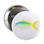Yellowtail Snapper fish 2.25