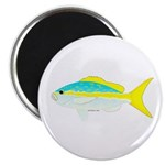 Yellowtail Snapper fish Magnet