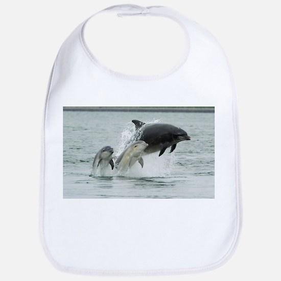 Dolphin Splash Bib