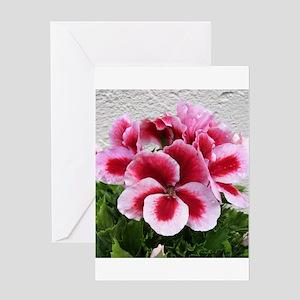 GERANIUM FLOWER~Regal Pinwheel~ Greeting Card