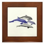 Four Dolphins together Framed Tile