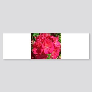 GERANIUM FLOWER~Hot Pink~ Sticker (Bumper)