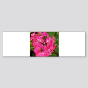 GERANIUM FLOWER~Cool Pink~ Sticker (Bumper)
