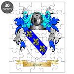 Bone Puzzle