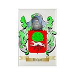 Bolgar Rectangle Magnet