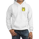 Boldizar Hooded Sweatshirt