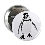 Humboldt Penguin smiling 2.25