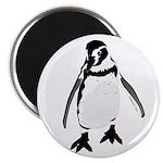 Humboldt Penguin smiling Magnet