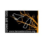 Crows are Cool - rectangular magnets