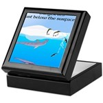 Leopard Seal Penguins and Ice Keepsake Box