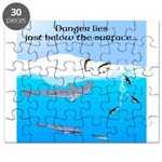Leopard Seal Penguins and Ice Puzzle