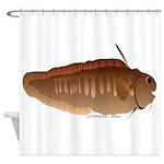 Eel Cod fish Shower Curtain