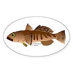 Toothfish (Sea Bass) fish (Annas Antarctica) Stick