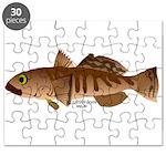 Toothfish (Sea Bass) fish (Annas Antarctica) Puzzl