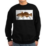 Toothfish (Sea Bass) fish (Annas Antarctica) Sweat