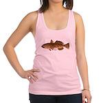 Toothfish (Sea Bass) fish (Annas Antarctica) Racer
