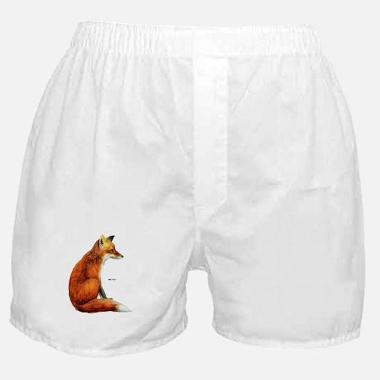 Red Fox Animal Boxer Shorts