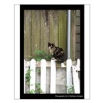 Kat on a Kenner Fence Posters