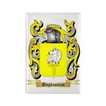 Bogdassian Rectangle Magnet (100 pack)