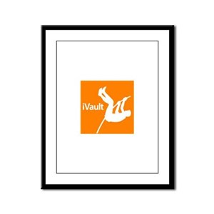 iVault Framed Panel Print