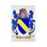 Bruyntjes Rectangle Magnet (100 pack)