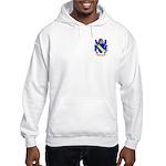 Brunesco Hooded Sweatshirt