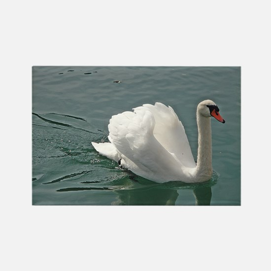 Reflective white swan Rectangle Magnet