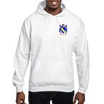 Bruna Hooded Sweatshirt