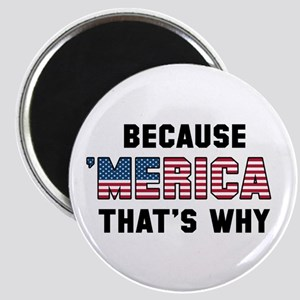 Because 'Merica Magnet