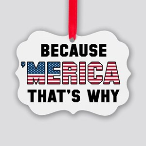 Because 'Merica Picture Ornament