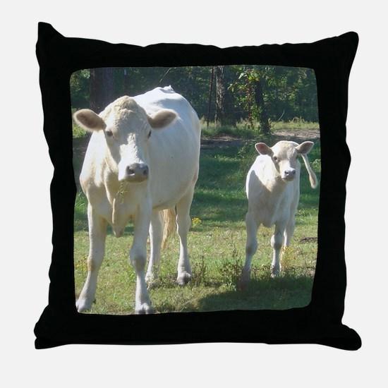 charolais Throw Pillow