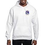 Broune Hooded Sweatshirt