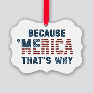 Because 'Merica Vintage Picture Ornament