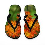 Orange Hawkweed Flip Flops