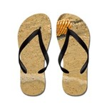 Shells and Sand on the Beach Flip Flops