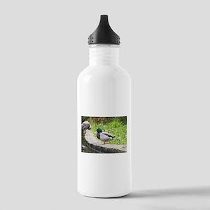 Duck life Water Bottle