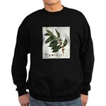 FIN-coffee-arabica-botanical Sweatshirt (dark)