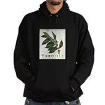FIN-coffee-arabica-botanical Hoodie (dark)