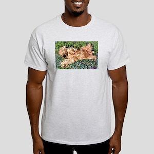 SLEEPING PUPPY Ash Grey T-Shirt