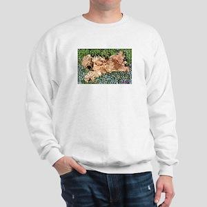 SLEEPING PUPPY Sweatshirt