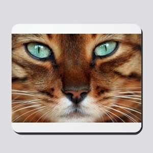 Paws and Wiskers Mousepad