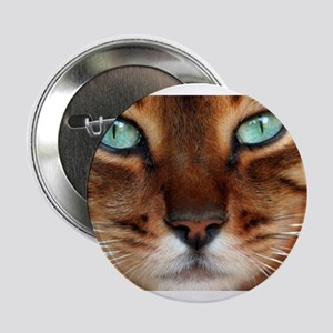 """Paws and Wiskers 2.25"""" Button"""