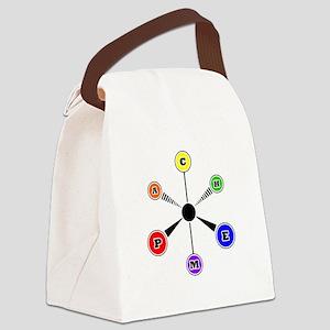 APCHEM VSEPR shirt Canvas Lunch Bag